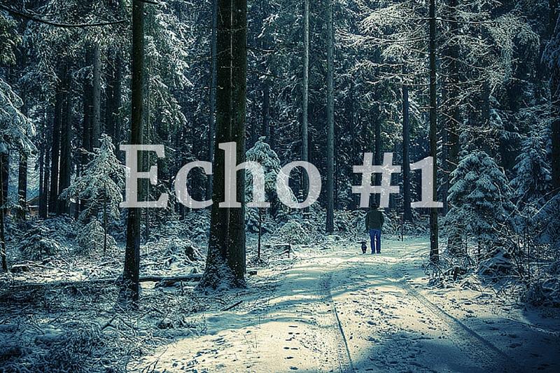 Echo tygodnia #1 + linkowe party