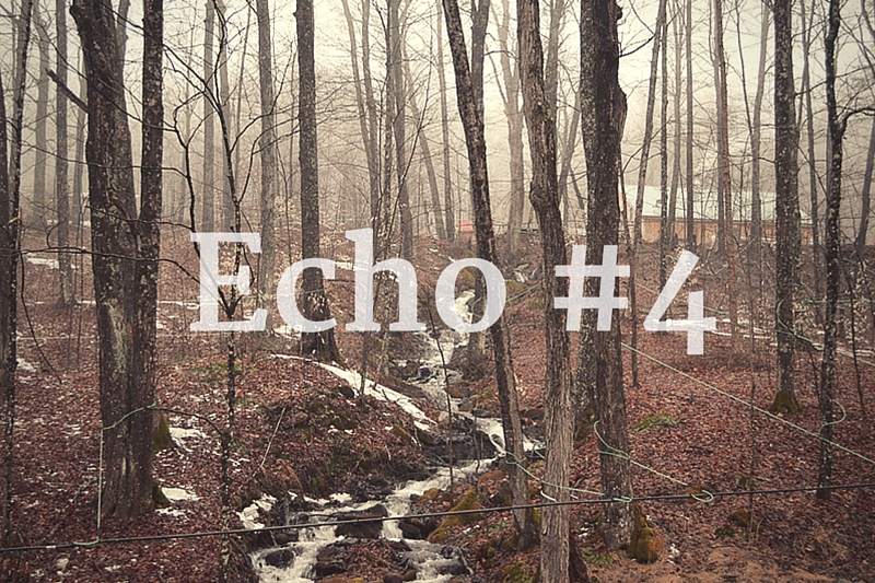 Echo tygodnia #4 + link party