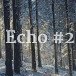 echo-2