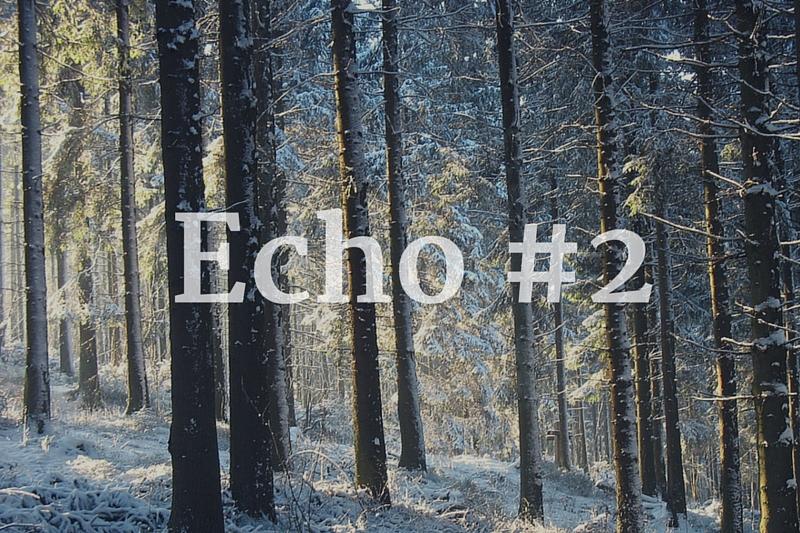 Echo tygodnia #2 + link party